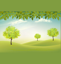 summer nature background with a green trees vector image