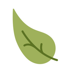 Tree leaf on white background vector