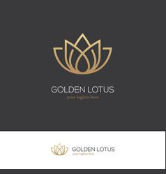 Golden lotus logo vector