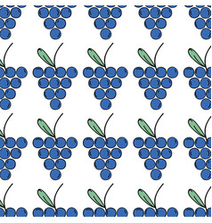 fresh grape fruit and organ food background vector image vector image