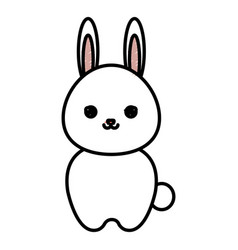 cute and tender rabbit kawaii style vector image