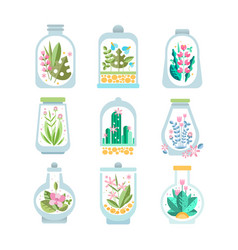 Flat set of glass vessel with blooming vector