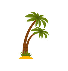 tropical palm trees on a white vector image
