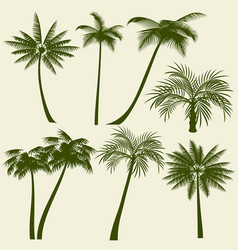 summer holiday palm tree silhouettes vector image vector image