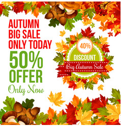 autumn sale discount offer banner template design vector image
