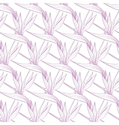 Birds of Paradise Flowers Seamless Pattern vector