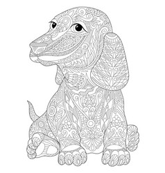 Dachshund dog adult coloring page vector