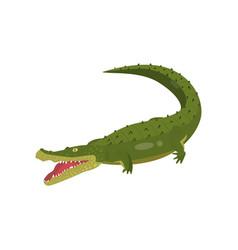 Realistic gavial crocodile isolated on white vector