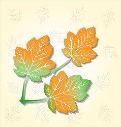 three leaves background vector image