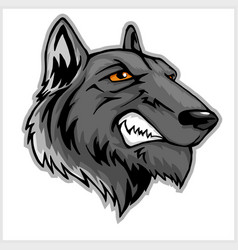 wolf head mascot isolated on white vector image