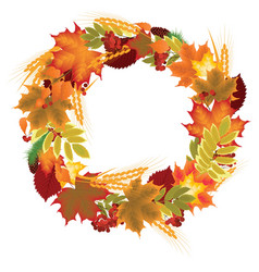 wreath of autumn leaves vector image vector image