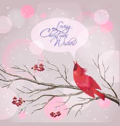 Christmas Snowy Rowan Berries Bird Card vector image vector image