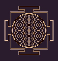 Monochrome outline flower of life yantra vector