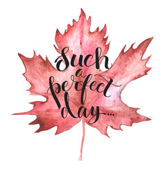 autumn leave with lettering vector image