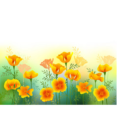 Background with california poppy vector