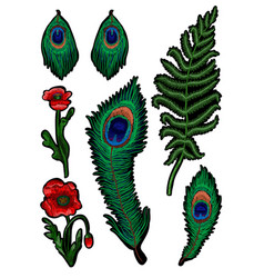 Fern feather peacock and poppy embroidered vector