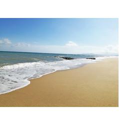 Summer bleu beach vector