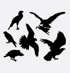 eagle hawk falcone animal silhouette vector image