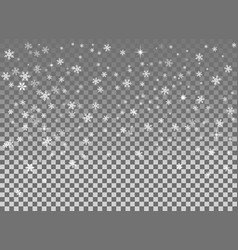 falling snow isolated on the a transparent vector image