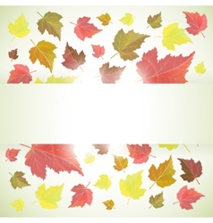 Autumn banner or background with leaves vector