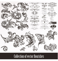collection of hand drawn flourishes vector image