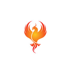 Creative phoenix bird logo vector