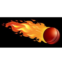 Cricket ball on fire vector