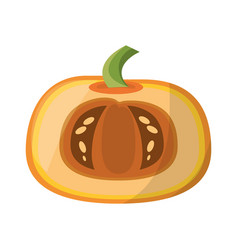 Pumpkin vegetable natural vector