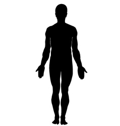 Silhouette human male vector