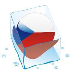 frozen button flag of czech vector image vector image