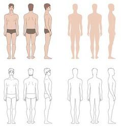 Man figure vector image vector image