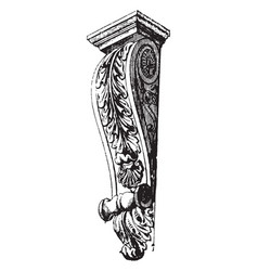 Ancone derivatives vintage engraving vector