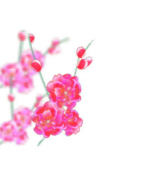 branches with delicate pink flowers and buds vector image