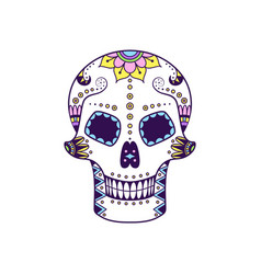 colorful sugar skull with doodle floral pattern vector image