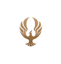 Creative phoenix bird logo vector