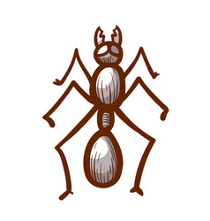 House sugar stink or coconut ant hand drawn icon vector