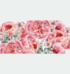 peony spring flowers colorful seasonal vector image