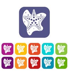 sea star icons set vector image