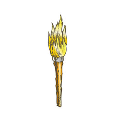 Torch handmade old wooden burning stick color vector