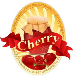 cherry jar vector image