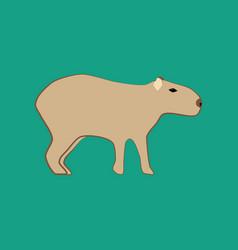 capybara animal vector image