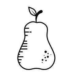 pear fruit food vector image