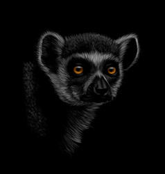 portrait of a head of a ring-tailed lemur on a vector image
