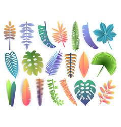 tropical leaves collection trendy summer exotic vector image