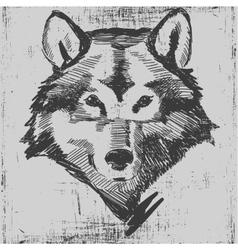 Wolf head hand drawn sketch grunge texture vector image