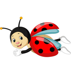 ladybug cartoon vector image