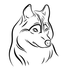 Portrait a wolf black and white vector