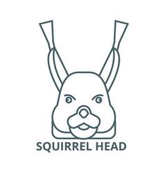 squirrel head line icon linear concept vector image