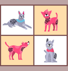 happy dogs with bright collars vector image