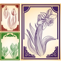 Set of backgrounds with hand-drawn flowers vector image